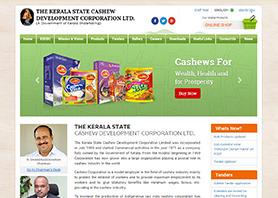 cashew 121